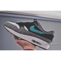 Air Max 1 Atoms Elephant Authentic