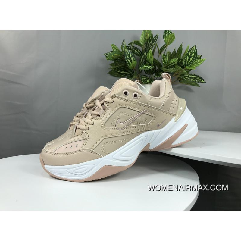 1aa68a2ca0da Nike Dad Sneakers Clunky Sneaker Dad Shoes AO3108 202 Air Monarch ...